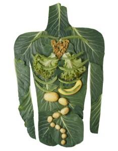 digestive-health-image