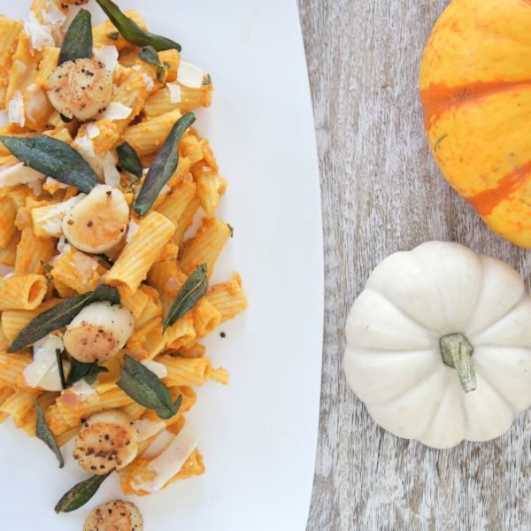 Creamy Pumpkin Sage Pasta with Seared Scallops placed on a long white serving dish with an orange and white pumpkin placed beside it. Ingredients include whole wheat pasta, sage leaves, garlic, pumpkin puree, Greek yogurt, chicken stock, scallops.