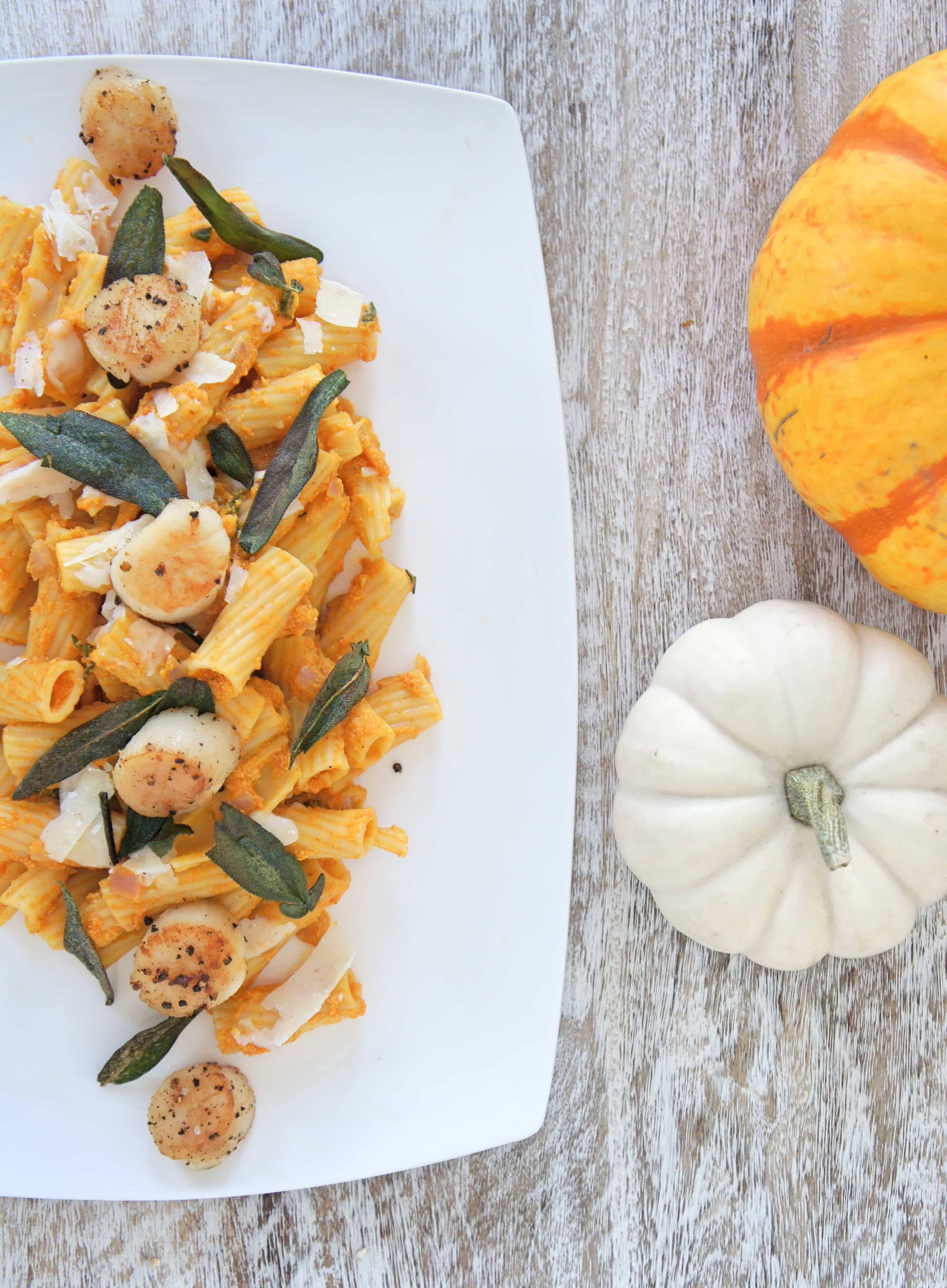 pumpkin top down 3