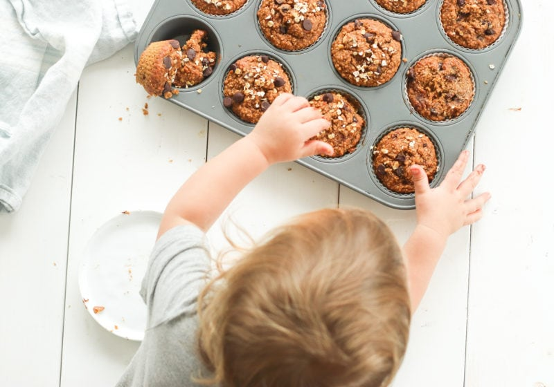 Wydler reaching for a oat flour pumpkin muffin. One bowl chocolate chip oat flour pumpkin muffins made with oat flour, pumpkin puree, creamy natural peanut butter, and chocolate chips.